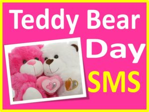 Teddy Bear Day 2016 SMS in Hindi upcharnuskhe