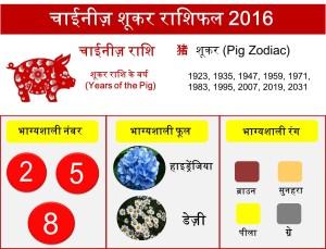 12 Pig zodiac upcharnuskhe 2016